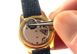 Watch Battery