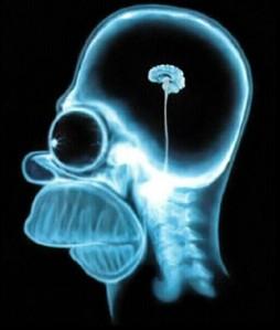 Small Brain
