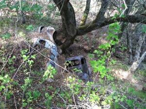 Abandoned Cars, Almaden Quicksilver Mine Park, San Jose, CA © Snowbirdofparadise.com