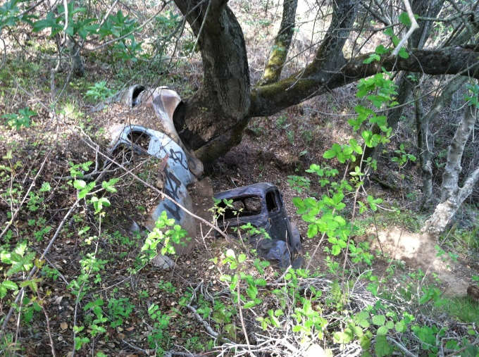 Abandoned Cars, Almaden Quicksilver Mine Park, San Jose, CA
