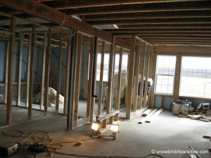 Framing the Basement