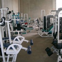 Body Typecasting on Gym Equipment