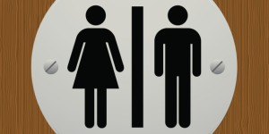 http://www.huffingtonpost.com/katherine-ripley/bathrooms-segregated-_b_8524374.html