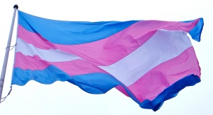 """Transgender Flag"" by Torbakhopper under license CC BY-ND 2.0"
