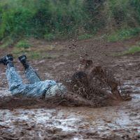 Wallowing in Dirt