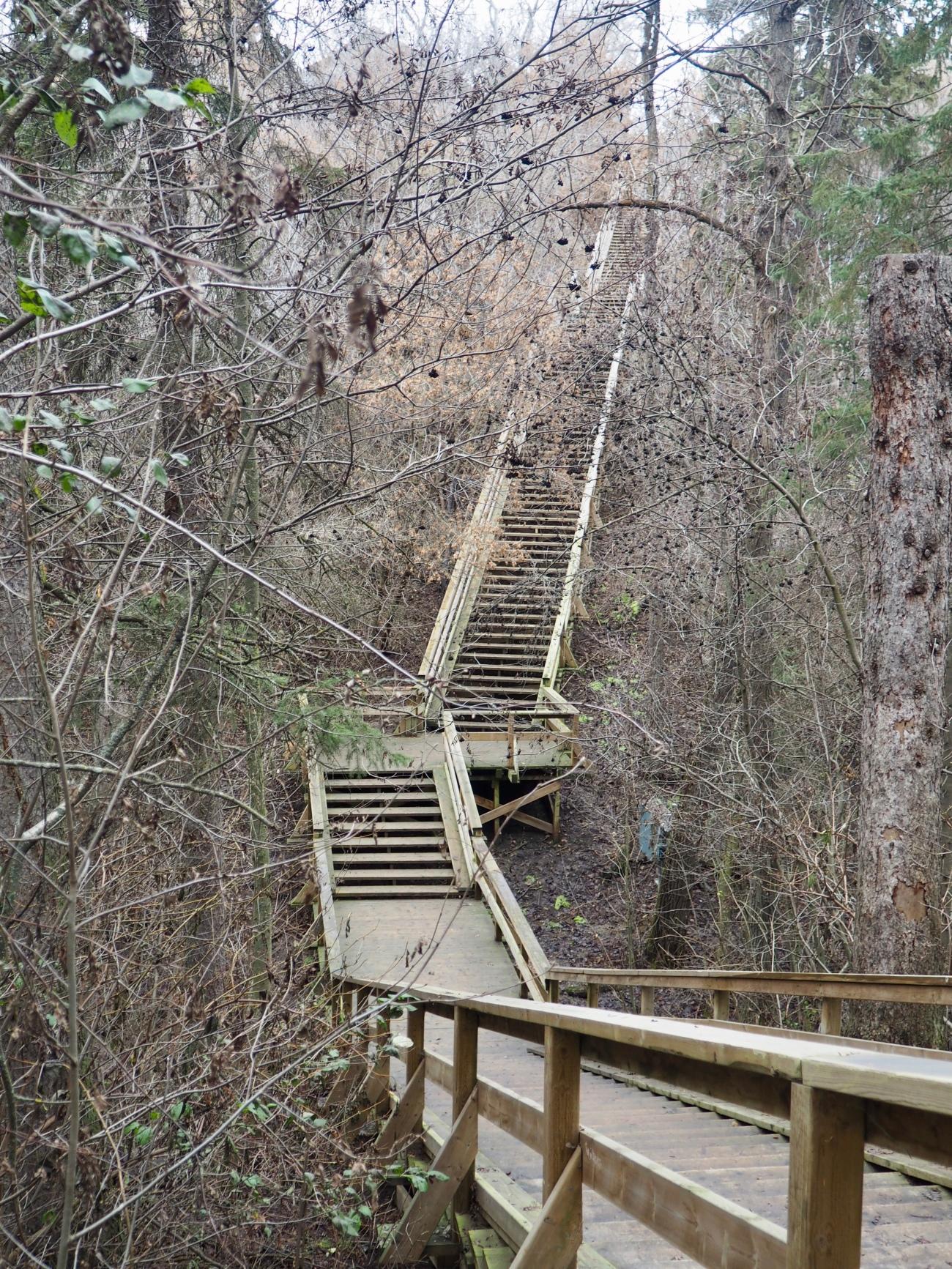 Very steep stairway