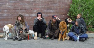Group of people and dogs sitting on sidewalk