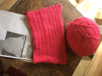 Pink Pussy Hat in Proces