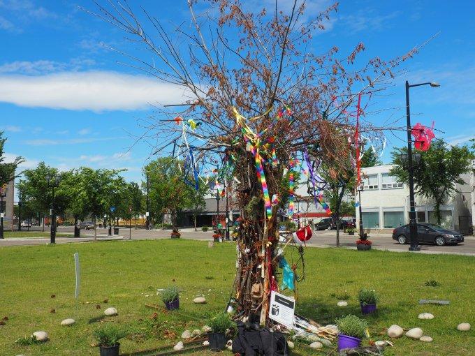 Maskihkîy Âcimowin / Medicine Stories, 118 Avenue, Edmonton, Alberta