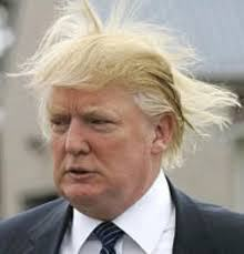 Donald-trump-hair-blown-by-wind