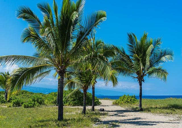 hawaii-1358992_640