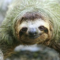 Sloth: The Misunderstood Sin